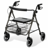 Guardian Envoy 480 Rolling Walker